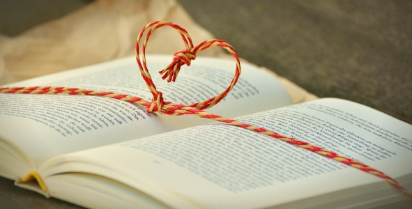 book-1760993_960_720-book-pixabay